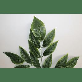 Ramo de hojas 5