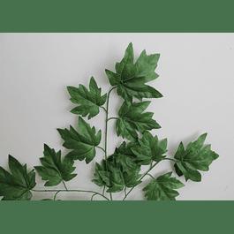 Ramo de hojas 14
