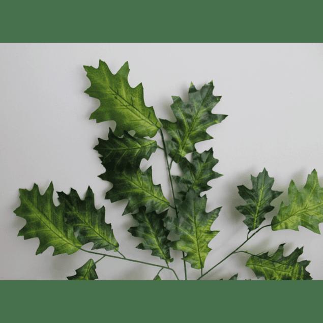 Ramo de hojas 15