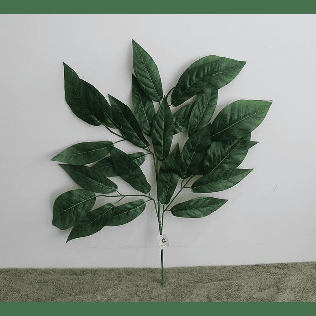 Ramo de hojas 16
