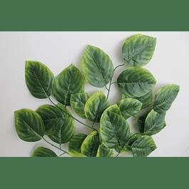 Ramo de hojas 17