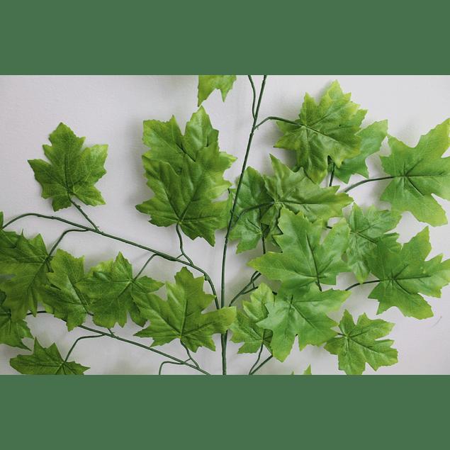 Ramo de hojas 18