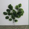 Ramo de hojas 19