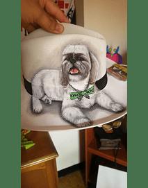 sombrero de perro