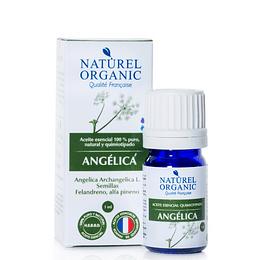 Aceite Esencial de Angélica 1ml