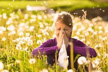 ¿Cómo aliviar las alergias de primavera con aceites esenciales?