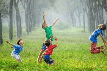 ¿Qué aceites esenciales pueden usarse para calmar a los niños y cómo pueden usarse adecuadamente para ello?