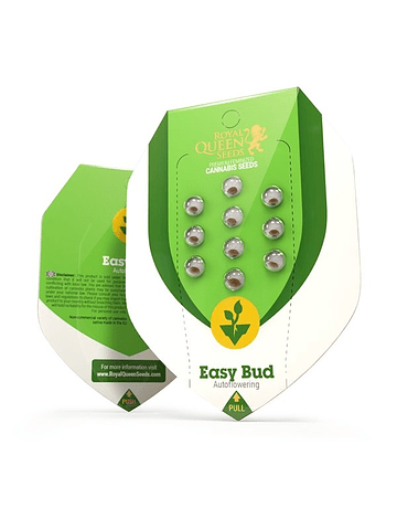 Auto Easy Bud Royal Queen Seeds 1ud