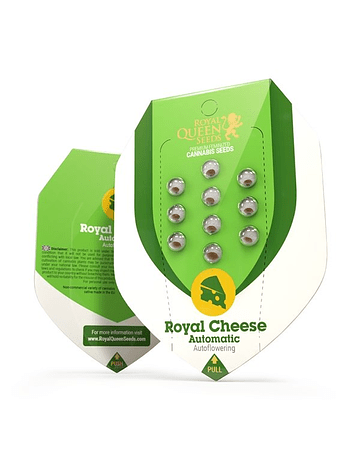 Auto Royal Cheese Royal Queen Seeds 1ud