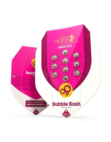 Fem Bubble Kush Royal Queen Seeds 1ud