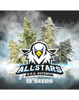 Pack de Semillas Auto All Stars USA Automix BSF Seeds 12ud