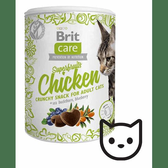 Snack Brit Care Superfruits - Pollo