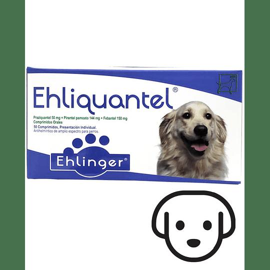 Antiparasitario Interno Ehliquantel