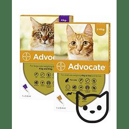 Advocate Gatos