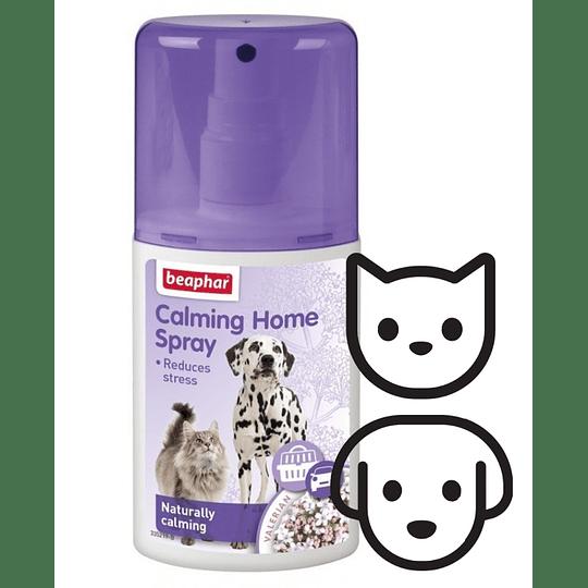 Calming Home Spray