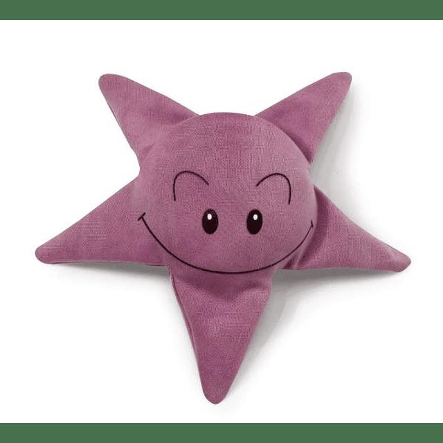 Estrela do Mar, Brinquedo Para a Água