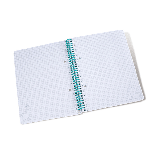 Llama Notebook with Spiral