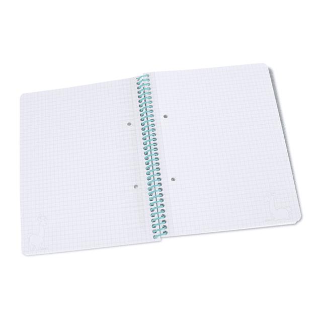 Cuaderno con Barro Espiral