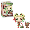 Harley Quinn With Helper Funko Pop DC 357