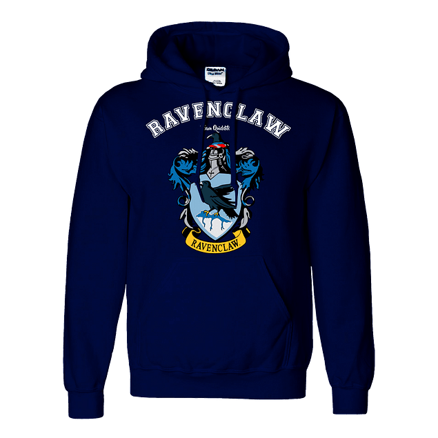 Buzo Harry Potter Ravenclaw Team Quidditch