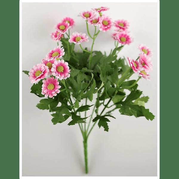 Ramo de Miosoti Rosa