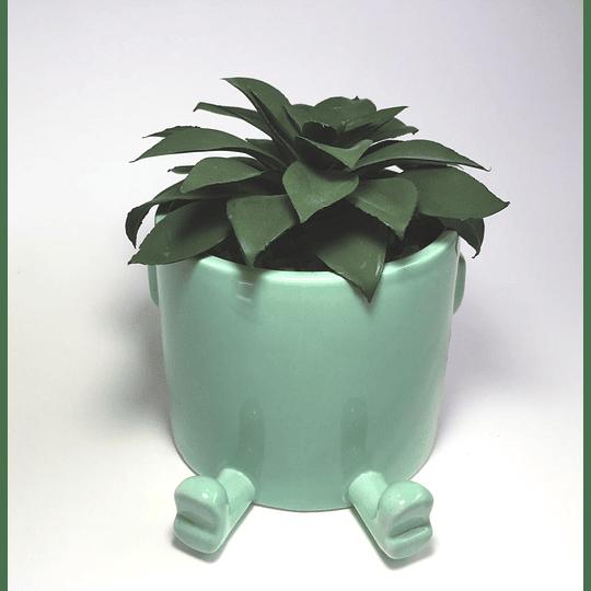 maceta planta (macetero)