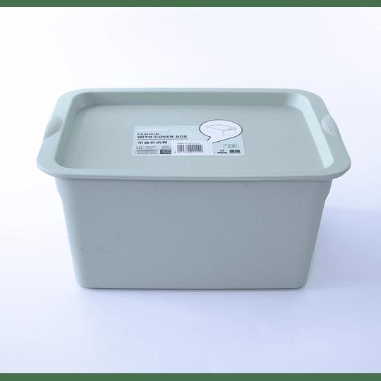 Caja con Tapa Organizadora 5L verde
