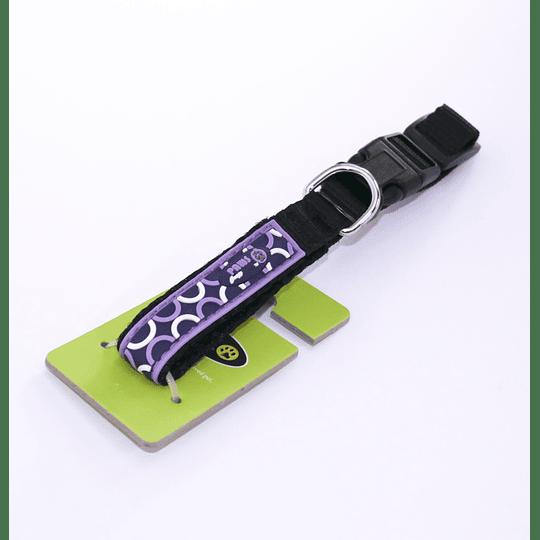 Collar Para Mascota Crazy Paws Pop Púrpura DPETC007-POP-PP