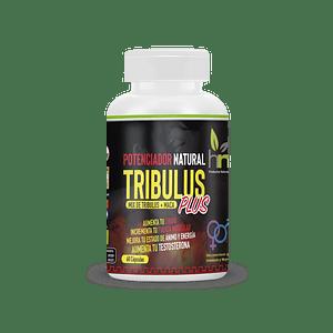 Tribulus Plus 60 Caps