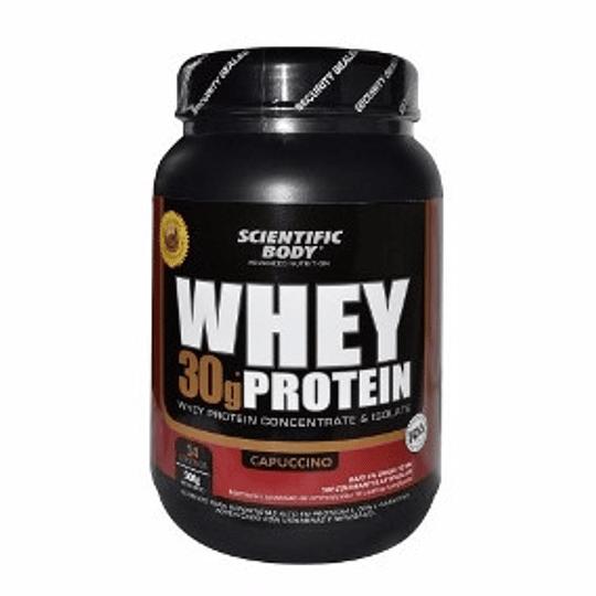 Proteína Whey Protein 500 Gr