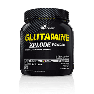 GLUTAMINE XPLODE POWDER 500 Gr.