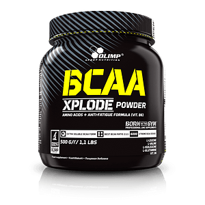 BCAA XPLODE POWDER 500 GR.