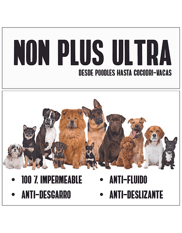 Cover dog PLUS ULTRA con Alas y Correa
