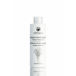 Lemongrass Hand & Body Wash