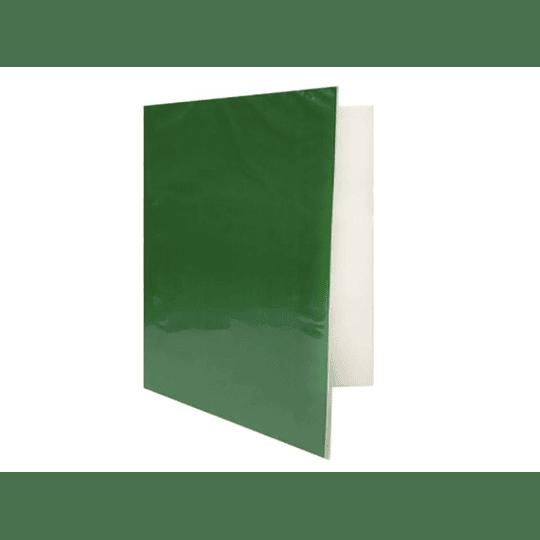 CARPETA PLASTIFICADA C/GUSANO VERDE PROARTE