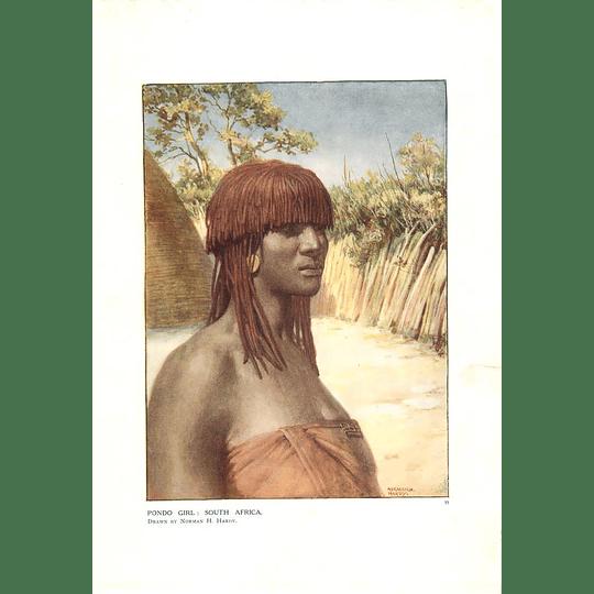 1910 Pondo Girl, South Africa, Norman Hardy Artwork