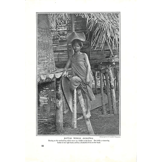 1910 Battak Woman, Sumatra, Resting On Ladder, Winnowing Basket, G Lambert