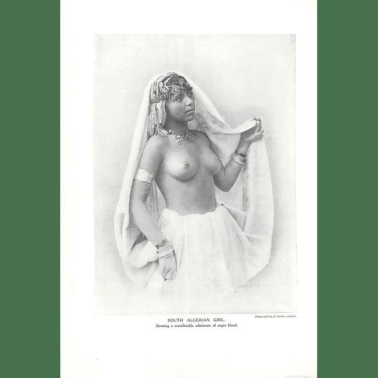 1910 South Algerian Girl, Photoj Geiser Algiers