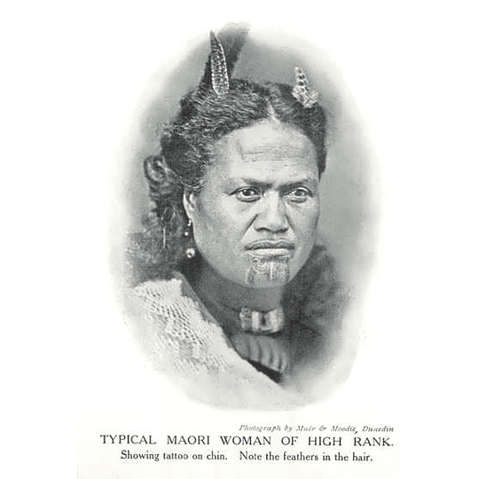 1910 Typical Maori Woman Of High Rank Showing Tattooed On Chin
