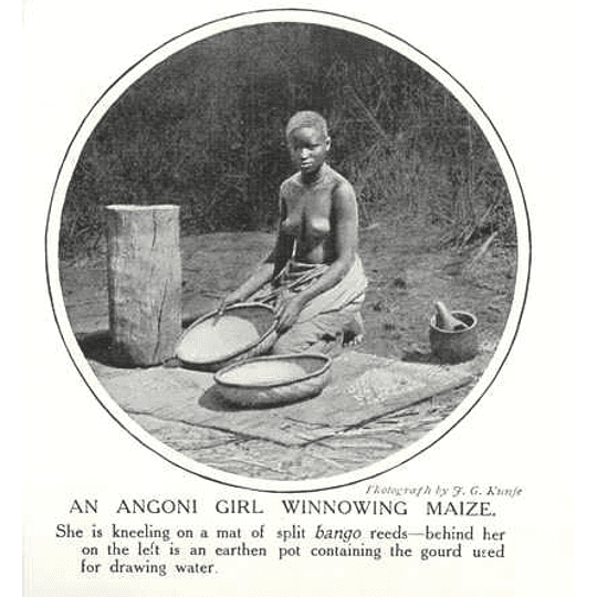 1910 Angoni Girl Winnowing Maize