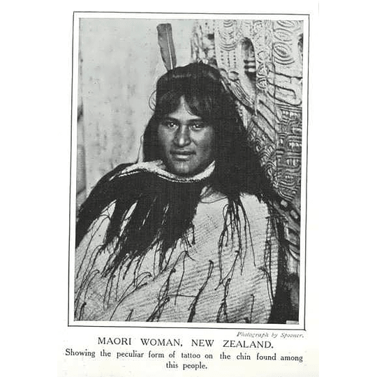 1910 Maori Woman Showing Peculiar Form Of Tattoo On Chin