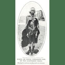 1910 Young Unmarried Girl Of The Luas'ngishu Masai, Enormous Earplug