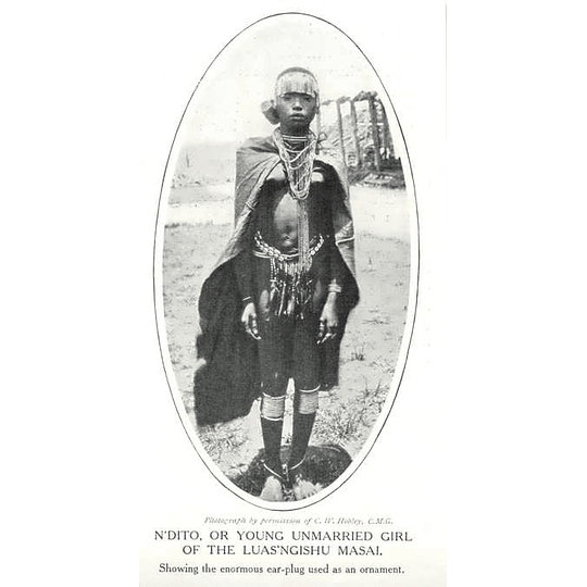 1910 Young Unmarried Girl Of The Luas'ngishu Masai, Enormous Earplug