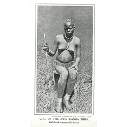 1910 Girl Of The Awa Wanga Tribe, Head Ornamentally Shaven