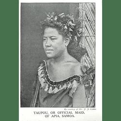 1910 Taupou, Or Official Maid Of Apia, Samoa