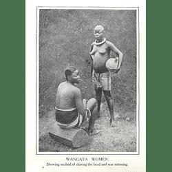 1910 Wangata Women, Congo Free State Head Shaved, Scar Tattooing