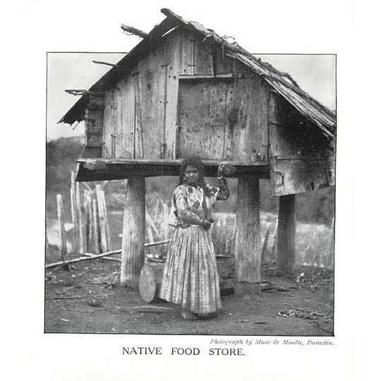 1910 Maori Native Food Store,