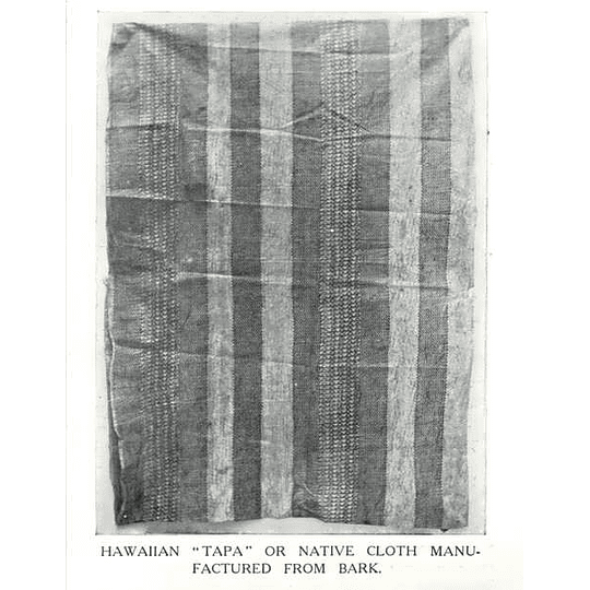 1910 Hawaiian Tapa, Native Cloth Manufactured From Bark