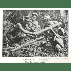 1910 Sakai Women At Dinner, Using Bamboo Utensils