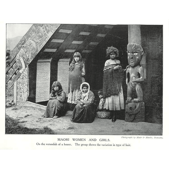 1910 Maori Women And Girls On The Randolph House Showing Hair A Variation